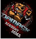 Академія змішаних бойових мистецтв MMA «ДАМАСК»